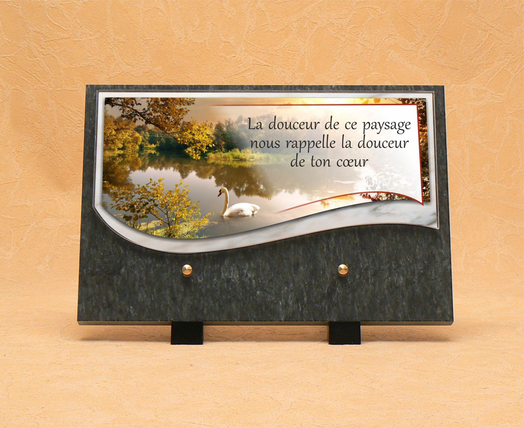 R f sw508 nat cygne et lac s rigraphie wetter saint louis - Plaque funeraire originale ...